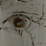 aspen-eye-3